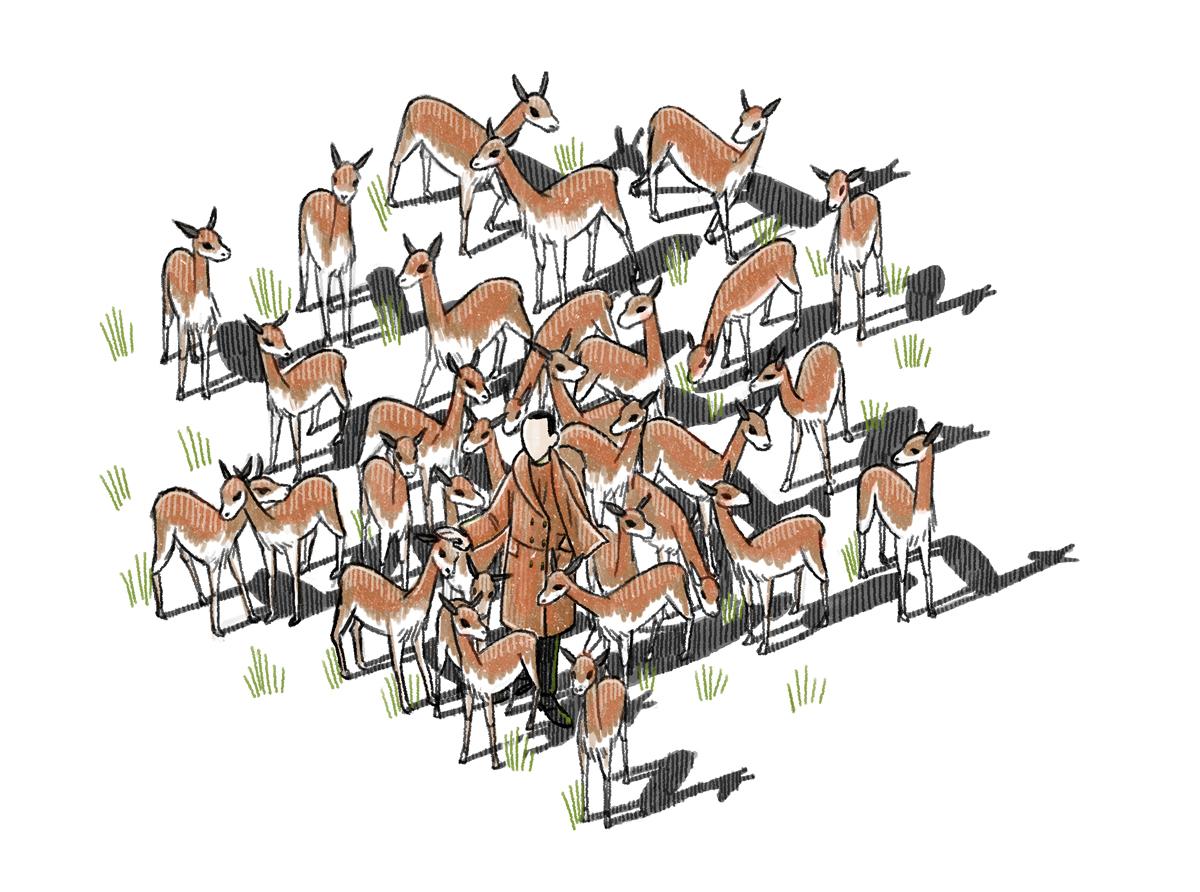 Vinson View Illustration for Wallpaper* april 2014 by Danae Diaz