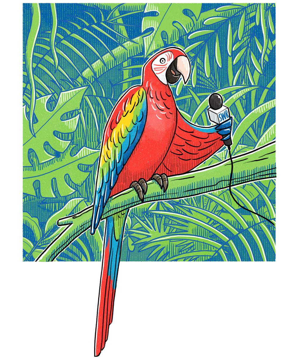 Danae_Diaz_SWR_Dschungeltour_papagei_parrot_microphone